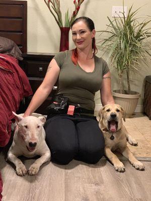 Atlas Dog Training Rohnert Park, CA Thumbtack