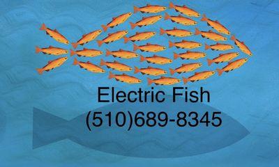 Electric Fish Alameda, CA Thumbtack