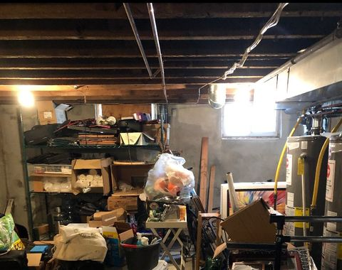 Basement Cleanout & Organize