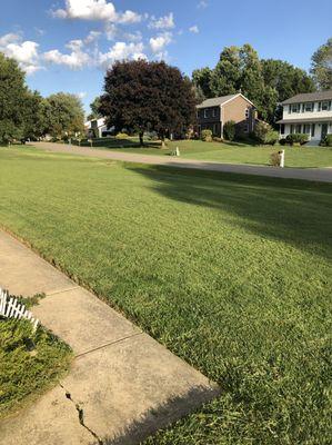 Cullin's Lawn Care Massillon, OH Thumbtack
