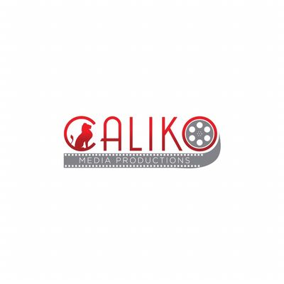 Caliko Media Productions Chicago, IL Thumbtack