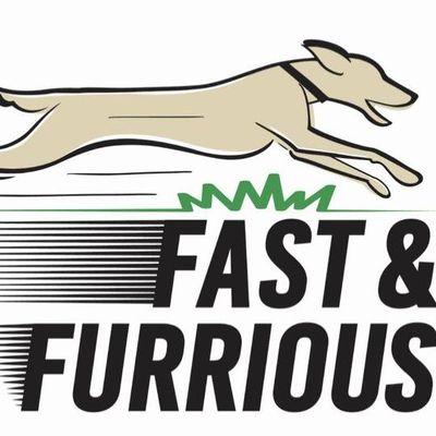 Fast & Furrious Cardio Club New York, NY Thumbtack