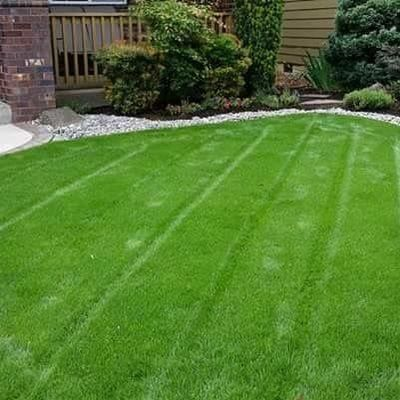 *Green valley landscaping * Vancouver, WA Thumbtack