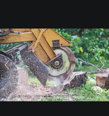 Advance Stump Removal Advance, NC Thumbtack