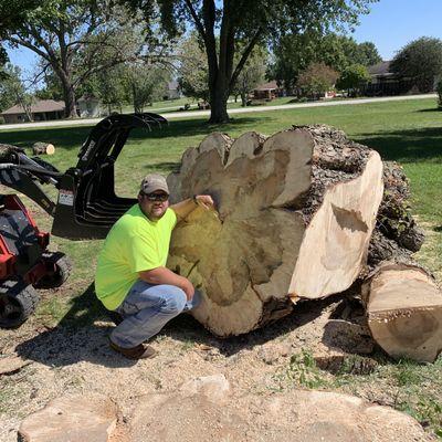 All Seasons Tree Care Smithville, MO Thumbtack