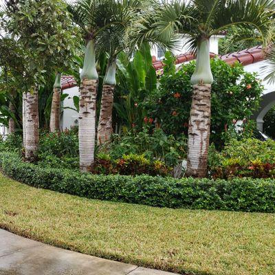Camo Way Property Maintenance Miami, FL Thumbtack