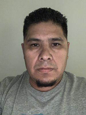 Saul Alvarado Lopez Antioch, CA Thumbtack