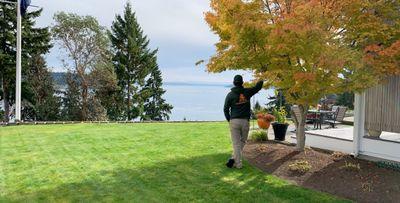 Nature breeze landscaping Federal Way, WA Thumbtack