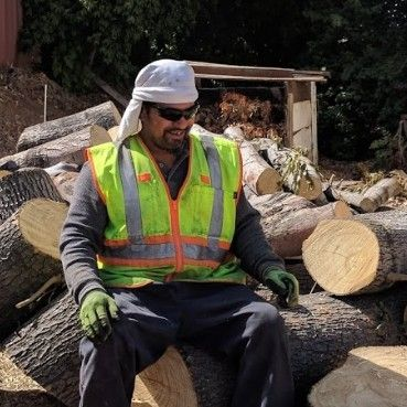Manny Tree Care San Bernardino, CA Thumbtack