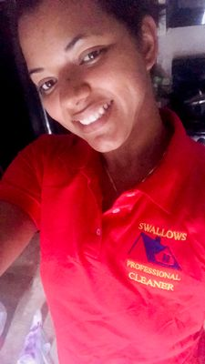 Swallows Homes cleaning service Houston, TX Thumbtack