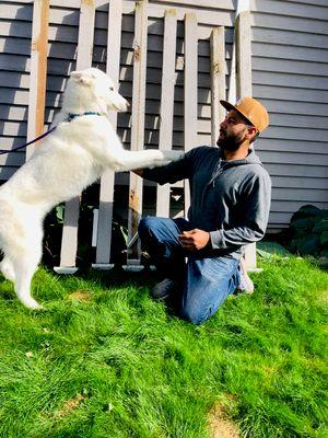 Huskies Remodeling Services Kent, WA Thumbtack