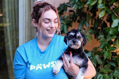 Pawsh.app (In-home pet grooming) San Francisco, CA Thumbtack